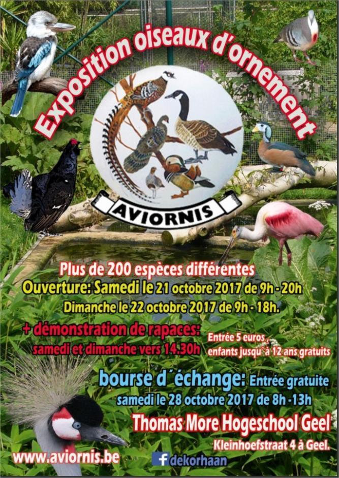 Exposition oiseaux d'ornement, Bourse à Geel (BE) 21 et 22 octobre 2017