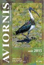 Aviornis France International Revue Aout 2015 Ibis d'Australie