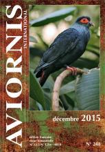Revue de Décembre 2015 - Article sur le garrot arlequin